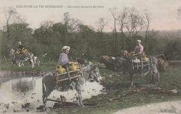 Scènes De La Vie Normande : Servantes Revenant De Traire - Anes - édit AD 41 - Non Circulée - Normandie - Basse-Normandie