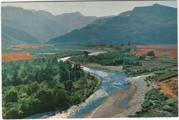 Autumn View Of The Hex River Valley, Cape -  (South Africa) - Zuid-Afrika