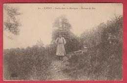 Chiny  - Sentier Dans La Montagne - Porteuse De Bois ( Voir Verso ) - Chiny