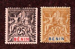 Bénin N°40,41 N* TB  Cote 30 Euros !!! - Used Stamps