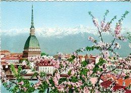 Torino. Via Roma E Palazzo Reale - Lot.2095 - Palazzo Reale