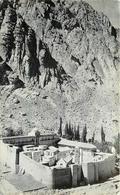 MONASTERE DE SAINTE CATHERINE - Sinaï. - Palestine