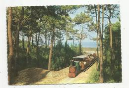 Cp, 17 , ILE D'OLERON , Le Petit Train De Saint Trojan,chemin De Fer ,voyagée 1969, Ed. Estel - Ile D'Oléron