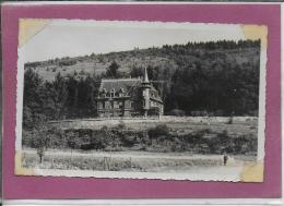 90.- GIROMAGNY .- CHÂTEAU RITTER - Giromagny