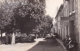 04 / GREOUX LES BAINS / HOTEL DES COLONNES ET CAFE DES MARONNIERS / CIRC - Gréoux-les-Bains