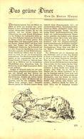 Das Gruene Diner (von Dr.Anton Mayer)  /Artikel, Entnommen Aus Zeitschrift /1935 - Bücher, Zeitschriften, Comics