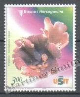 Bosnia Herzegovina 2006 Yvert 517, Mushrooms - MNH - Bosnia Herzegovina
