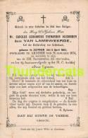 BIDPRENTJE ADEL NOBLESSE BARON VAN LAMSWEERDE GELDERLAND ZUTPHEN 1801 ARNHEM 1874 - Santini