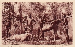 84Vn   Centrafrique Paoua Antilopes Tuées Pour Les Porteurs Chasse Chasseurs - Centrafricaine (République)