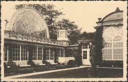 Unidentified Glasshouses, C.1930s - Agfa RP Postcard - To Identify