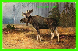 ANIMAUX - ORIGNAL -  MOOSE -  SERIE 406 - PAINTING - - Animaux & Faune