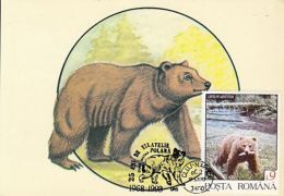 ANIMALS, BROWN BEAR, CM, MAXICARD, CARTES MAXIMUM, 1993, ROMANIA - Bären
