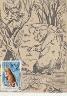 ANIMALS, BROWN BEAR, FOX, FABLE, CM, MAXICARD, CARTES MAXIMUM, 1983, ROMANIA - Ours