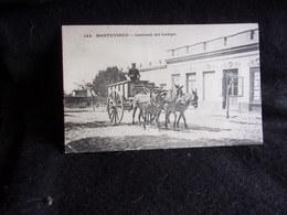 Uruguay. Montevideo.Carruaji Del Campo.Avant 1904.Voir 2 Scans. - Uruguay