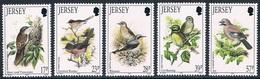 Jersey - Oiseaux De L'été 624/628 ** - Passereaux