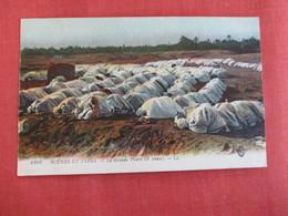 Tunisia  La Grande Priere   - Ref 2959 - Tunisie