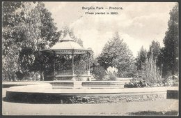 S Africa :Burgers Park, Pretoria (trees Planted 1892), 1/2d PRETORIA23 DEC 10 C.d.s > Johannesburg - South Africa