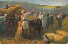 Feldpost - Ernte - Rückkehr Bundeslade - Miesbach 12.10.1916 - 82 Altes Testament - Germany