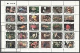 Honduras 1995, Airmail Mushrooms - Sheetlet 30 Values - MNH - Honduras