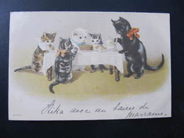 CPA - Illustrateur : ? - CHATS A TABLE - N° 867 - Cats
