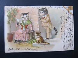 CPA - Illustrateur : ? - FAMILLE DE CHATS - B. & K. I. L. - Cats