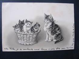 CPA - Illustrateur : ? - FAMILLE DE CHATS  DANS UN PANIER - Gaufrée - Cats