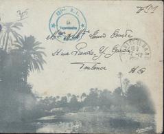 Enveloppe Illustrée Oued Oasis Verte Cachet Bleu 131 RI 2ème Bataillon CAD Teniet El Haad Alger 12 12 56 FM Algérie - Algeria (1924-1962)