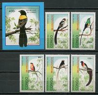 Congo 1993 / Birds MNH Vögel Aves Oiseaux / Cu8033  41-15 - Birds