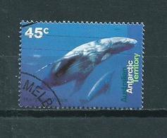 1995 AAT Whale,walvis Used/gebruikt/oblitere - Australisch Antarctisch Territorium (AAT)