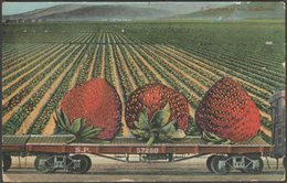 Exaggeration - A Specimen Of Our Strawberries, C.1910 - Newman Postcard - Humour