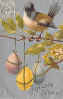 Illustration - Oiseau Oeuf - Joyeuses Pâques - Oiseaux