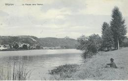 WEPION : La Meuse Vers Namur - TRES RARE VARIANTE - Nels Série Dave-Wepion N° 31 - Cachet De La Poste 1906 - Namur