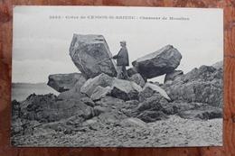 CESSONS SAINT BRIEUC (22) - GREVE DE CESSON SAINT BRIEUC - CHASSEUR DE MOUETTES - Saint-Brieuc