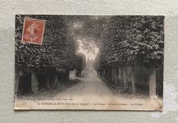 60 PLESSIS DE ROYE - Plessier - Le Château - Allée Du Château - Les Tilleuls - Cpa Oise - France
