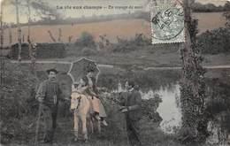 La Vie Aux Champs - En Voyage De Noce - Scènes Champêtre Couple âne - Agriculture