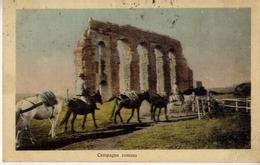 Campagna Romana - Formato Piccolo Viaggiata – Ad - Zonder Classificatie