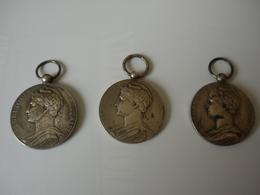Medaille  Du Travail En Argent  De 1902  Une De 1908 Et De 1923 - Autres Collections