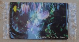 Oman - Barleria Aucheriana Flower - 53OMNH - 2001, 50.000ex, NSB - Oman