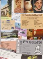 Lot 12 Tickets Entrées Musée, Salons, Vulcania, Biennale Lyon - Tickets - Vouchers