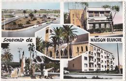 0313 Maison Blanche Algérie - Les Jardins - Les Ecoles - L'Eglise - Le Monument Aux Morts - Les Nouvelles Constructions - Algérie