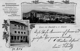 (67) CPA  Gruss Von Neustadt A D Haardt (Bon Etat  ) - Ludwigslust