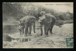 SRI LANKA - CEYLON - 1908 - ELEPHANTS A KANDY - Sri Lanka (Ceylon)
