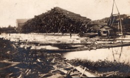 USA Maine Island Falls Exploitation Forestiere Logging Ancienne Carte Photo 1907 - United States