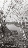 Iowa McGregor Pikes Peak State Park Riviere Arbres Ancienne Carte Photo 1940 - United States