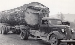 Oregon Exploitation Forestiere Camion Chevrolet Logging Lumber Ancienne Carte Photo 1939 - United States