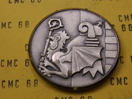 SUISSE Medaille    Fedaration  Fanfares  Democratiques  Ajoie 1922- 1975  44mm  -42 G - Other