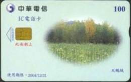 = TAIWAN - IC 00C017  =  MY COLLECTION - Taiwan (Formosa)