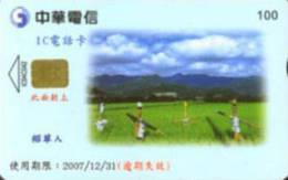 = TAIWAN - IC 04C042  =  MY COLLECTION - Taiwan (Formosa)