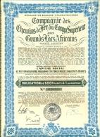 Compagnie De Chemins De Fer Du Congo Supérieur Aux Grands Lacs Africains - Chemin De Fer & Tramway