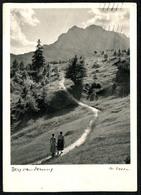 B3935 - Walter Nissen - Künstlerkarte -  Bergwanderung - Verlag Baierbach Am Simssee - Künstlerkarten